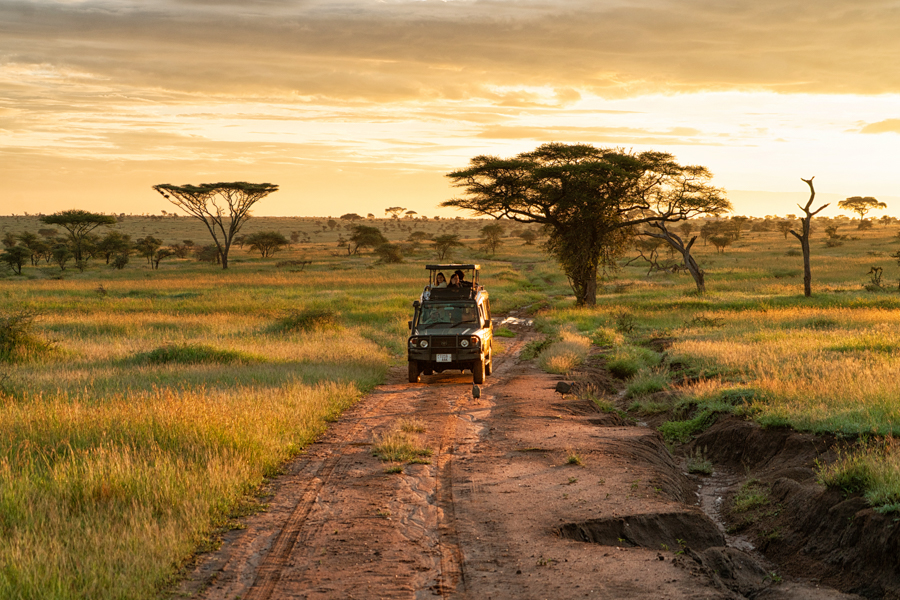 game-drive-africa-east-camps-safari